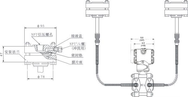 > yd3051lp双法兰液位变送器   螺纹安装式(rtw)差压变送器